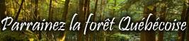Aidez à préserver la forêt Québécoise !