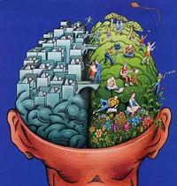 cerveau-gauche-droit