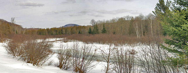 Lac en hiver